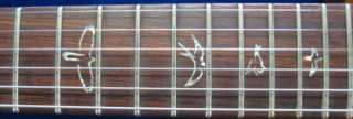 New PRS Paul Reed Smith Al Di Meola Prism W/ Case and FREE GUITAR