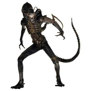 Aliens New NECA 7 Alien Warrior Action Figure