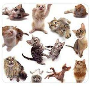 NEW Cat Group Mouse Pad (Input Devices) Office Products