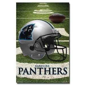Carolina Panthers 2008 Football New Nfl Poster 4584
