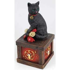 Magical Cat Wishing Box Wicca Wiccan Metaphysical Religious New Age