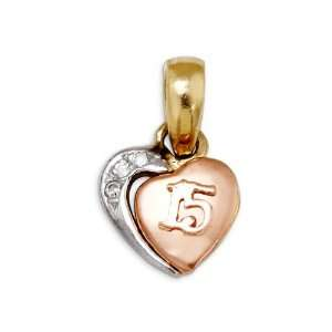 15 Heart CZ 14k Yellow White Rose Gold Charm Pendant