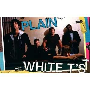 Plain White Ts   Music Poster   22 x 34