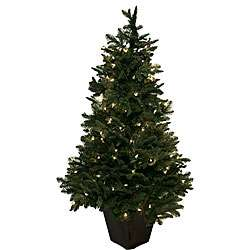 Noble Fir 4 foot Pre lit Christmas Tree