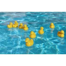 eWonderWorld Baby Bath Toys Plastic Ducky   12 Pieces