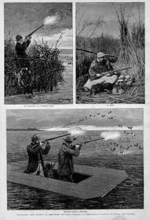 DUCK HUNTING, ANTIQUE DECOYS, CHESAPEAKE BAY SHOOTING