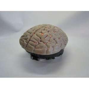 Brains Model 302 Lighted Flashing Bike Helmet Cover