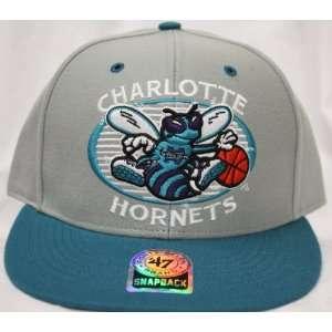 Charlotte Hornets Snapback Retro Logo Gray / Teal Two Tone