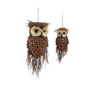 Club Pack of 12 Modern Lodge Pine Cone and Twig Owl