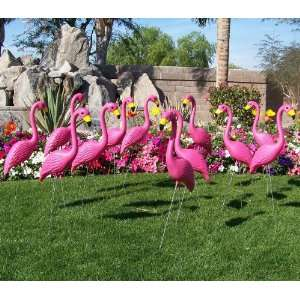 Pink Yard Flamingos in Bulk for Flocking Surprises or A Pink Flamingo