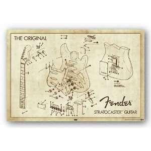The Original Fender Stratocaster Guitar   Diagram 24x36