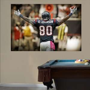 NFL Andre Johnson Celebration Mural Vinyl Wall Graphic Decal Sticker