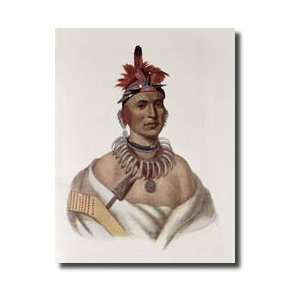 Kansas An Oto Chief Illustration From the Indian Tribes O Giclee Print