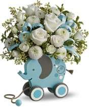 New Baby Boy Flowers, New Baby Boy Flower Arrangements   Send Baby Boy