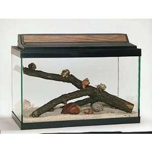 Land Hermit Crab Terrarium Habitat Kit (with Prepaid
