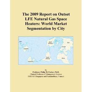 The 2009 Report on Outset LFE Natural Gas Space Heaters World Market